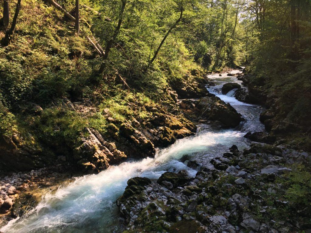 Vintgar 10 mooiste plekken in Slovenië