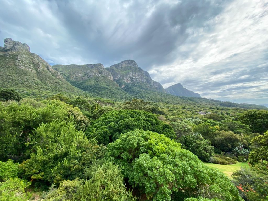 De Nationale Botanische Tuinen van Kirstenbosch
