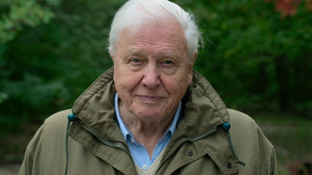 Documentaire A Life on our Planet David Attenborough
